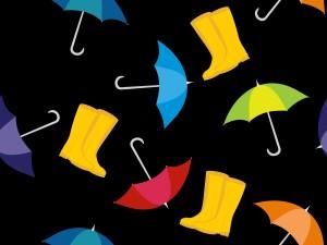 rainy_searson_1000008745-120613int